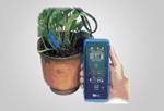 IQ150土壤原位PH计,土壤原位酸度计